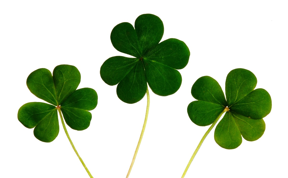 St. Patrick's Day is a perfect day to implement a GREEN cleaning strategy
